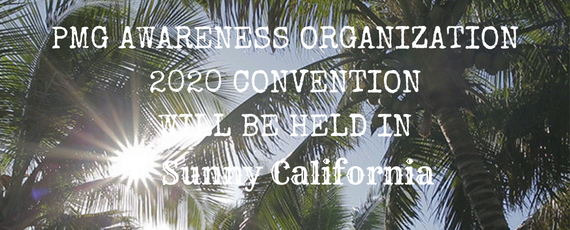 PMG Awareness 2020 Convention